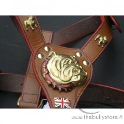 Harnais en cuir motifs Bulldog Anglais