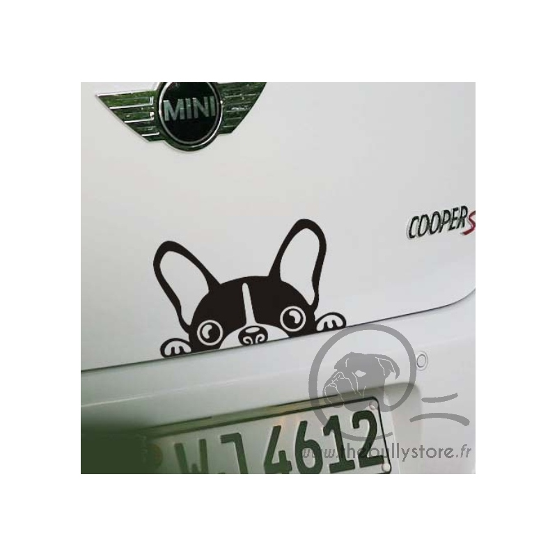For you > Sticker et Plaque > Sticker voiture Bouledogue Francais