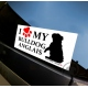 Sticker voiture Bulldog Anglais The Bully Store