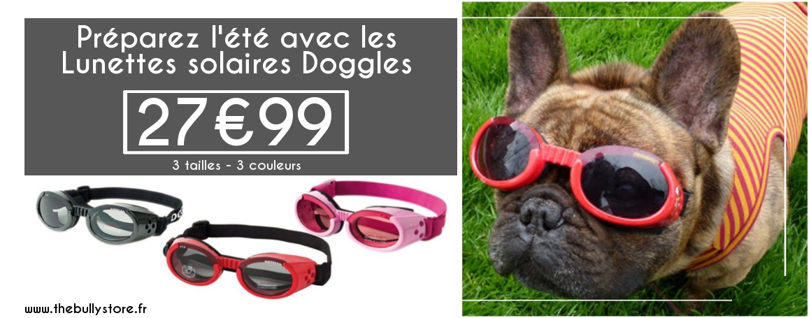 Lunettes solaires Doggle